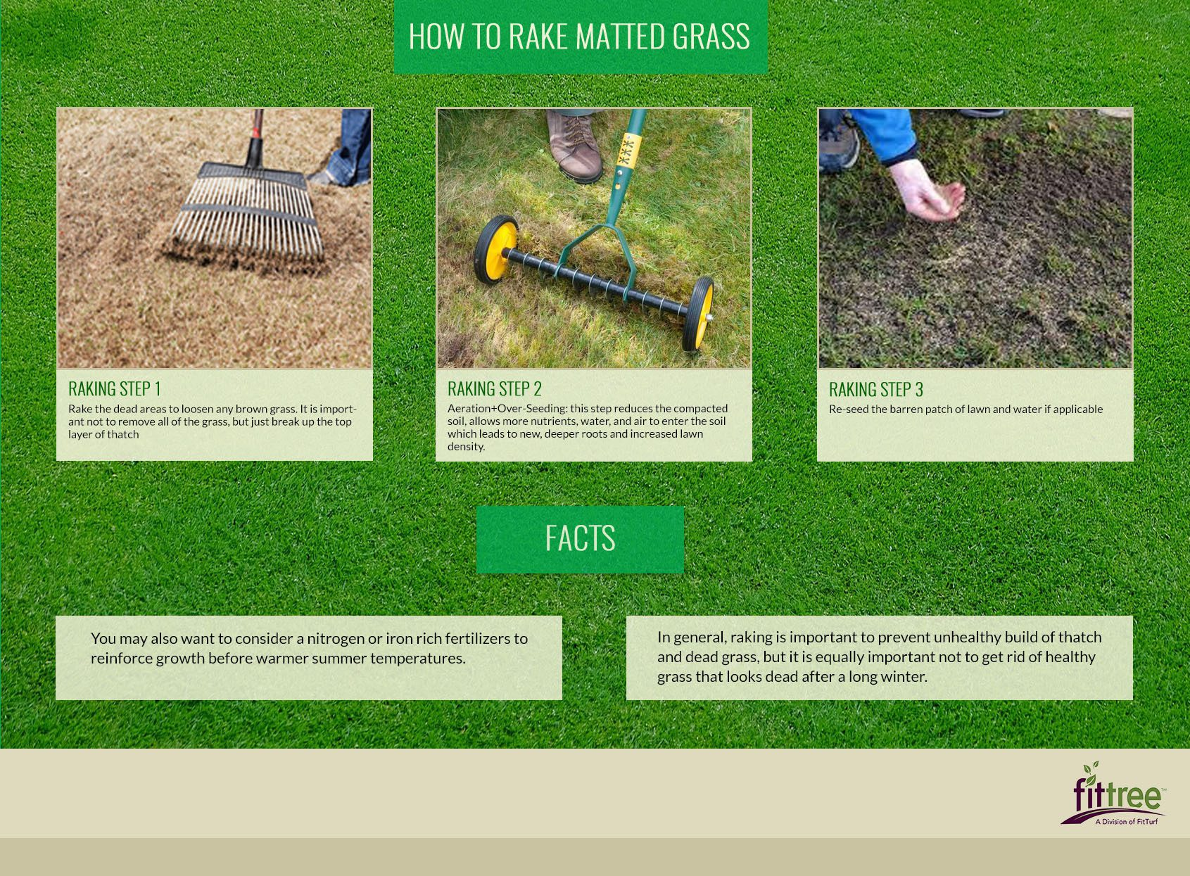How And When To Rake Dead Patches Of Your Lawn