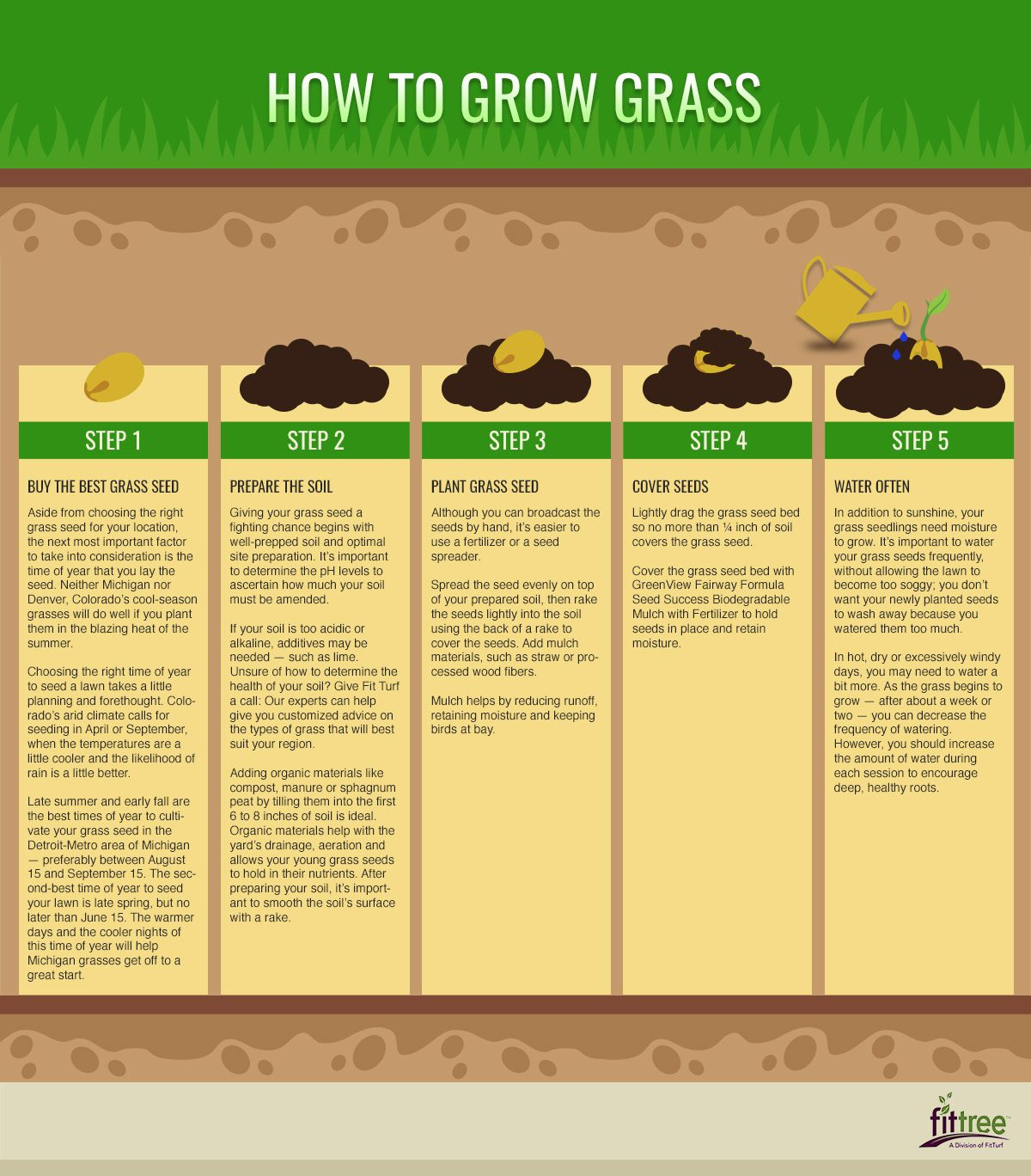 How To Grow Grass Fitturf Com